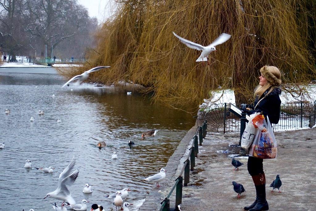 Mulher no parque, Londres