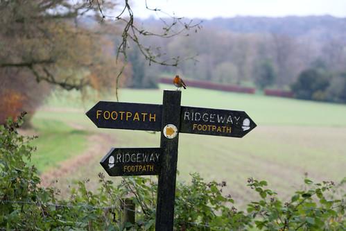 Robin on The Ridgeway sign