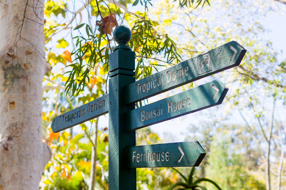 Signs at Brisbane botanic gardens