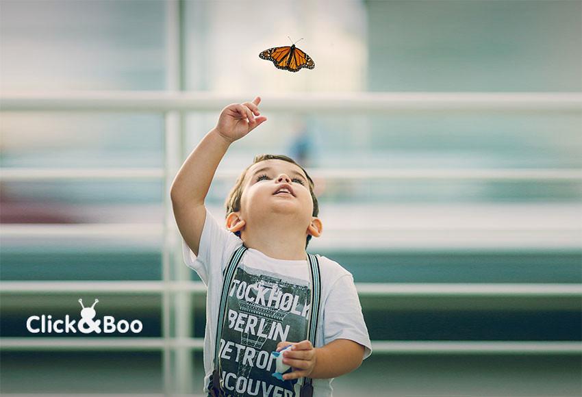 Miguel ve una mariposa