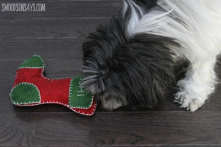 Dog sniffing DIY dog toy