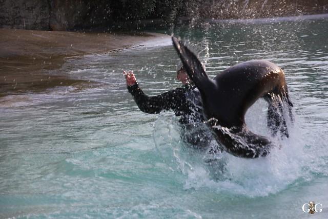Besuch im Berliner Zoo 06.12.201529