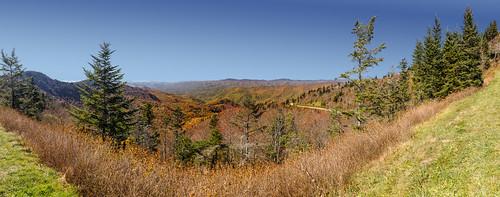 allamericanroad autumn blueridgeparkway nationalparks nationalscenicbyway northcarolina unitedstates