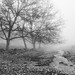 Farewell to Autumn by Esmaeel Bagherian
