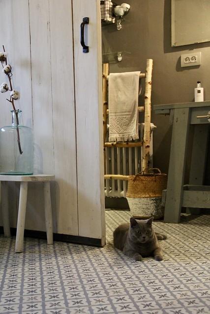 Badkamer landelijk
