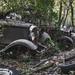 Lost car by petit tiago
