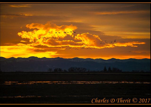 Sunrise, Sangre de Cristo, and Cranes