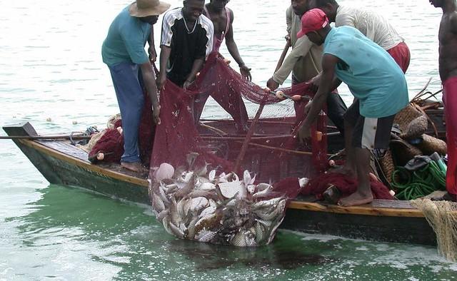 Fishermen in Kalangala on Lake Victoria. Credit Wambi Michael
