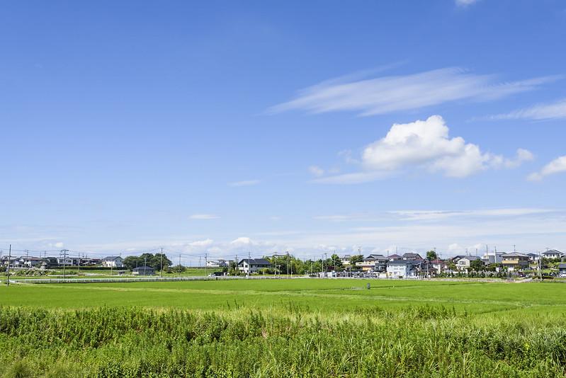 Summer sky,Anjyo,AICHI