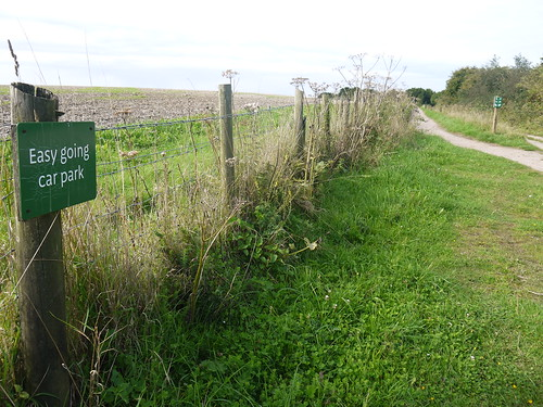 Easy Going - South Downs Way