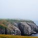 Cape St. Mary's by Kevin_Morris