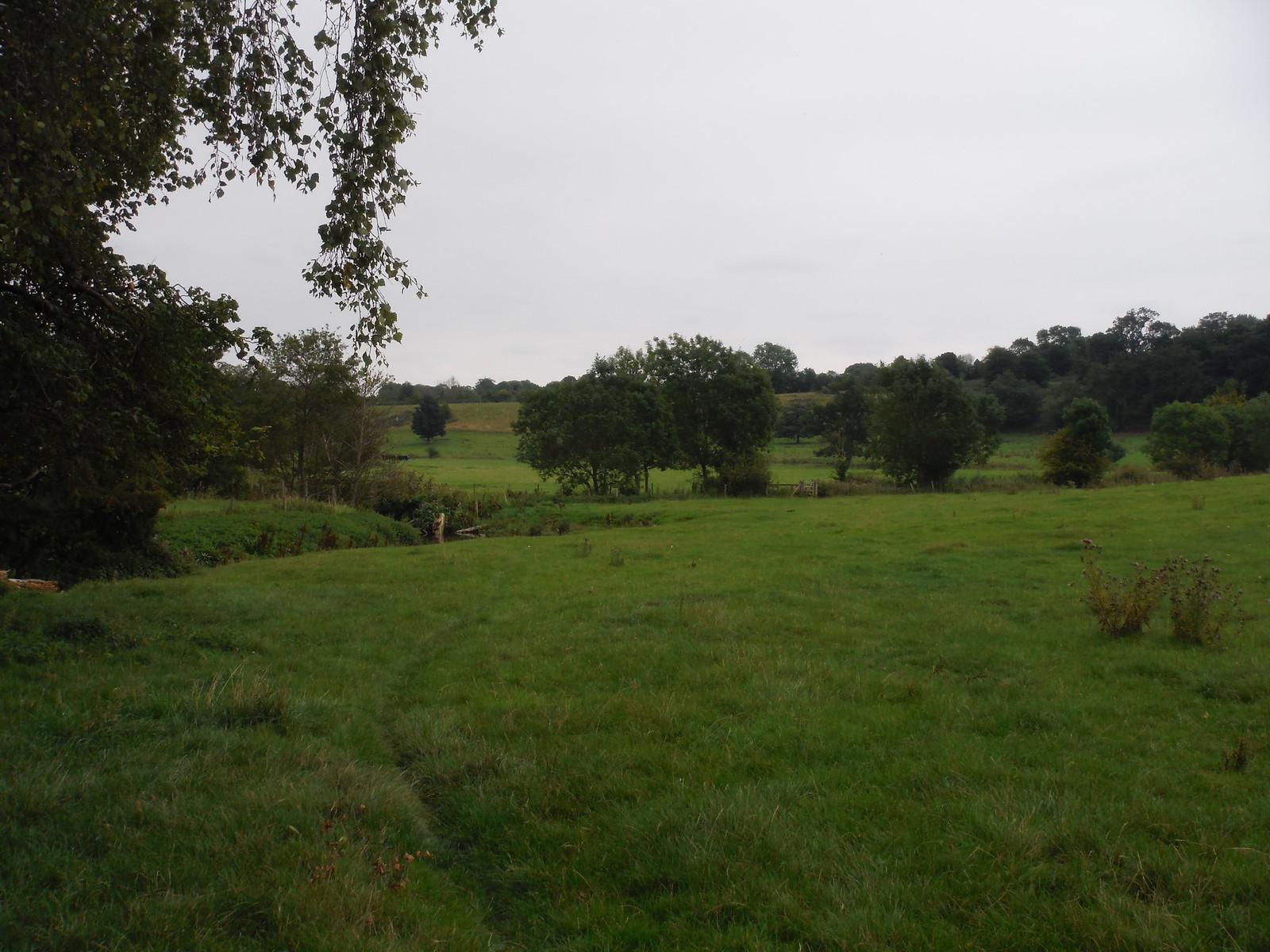 Ash Valley towards Widfordbury SWC Walk 164 Roydon to Sawbridgeworth via Henry Moore Foundation