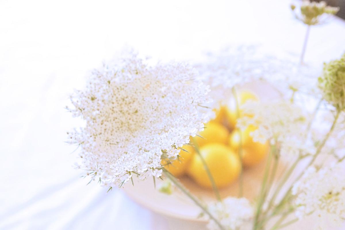 lemon_1a