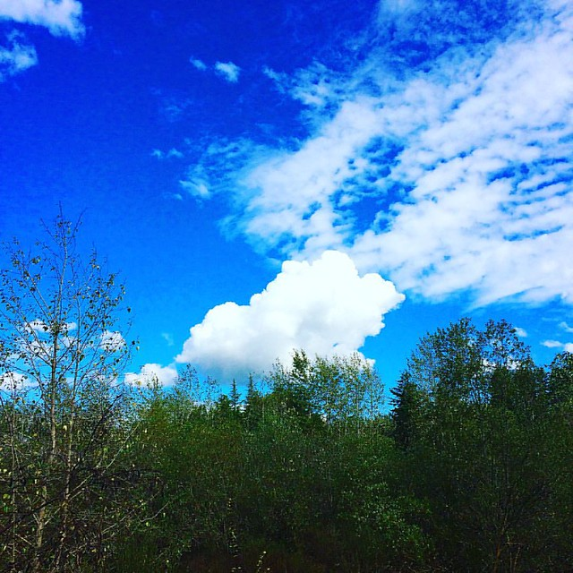 Little Fluffy Clouds ☁️