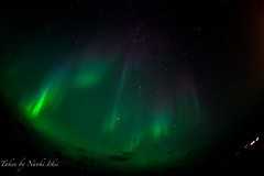aurora at whitehorse