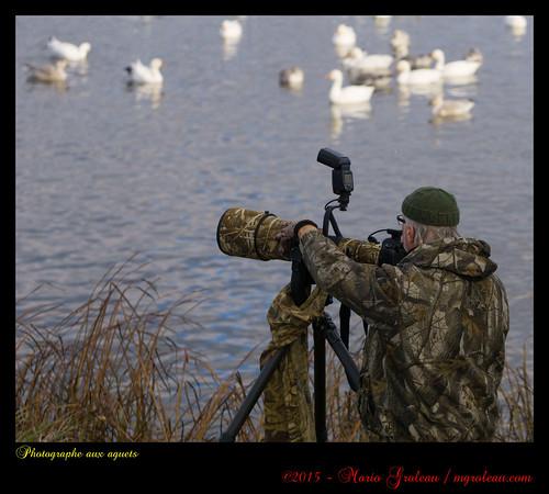 Photographe aux aguets
