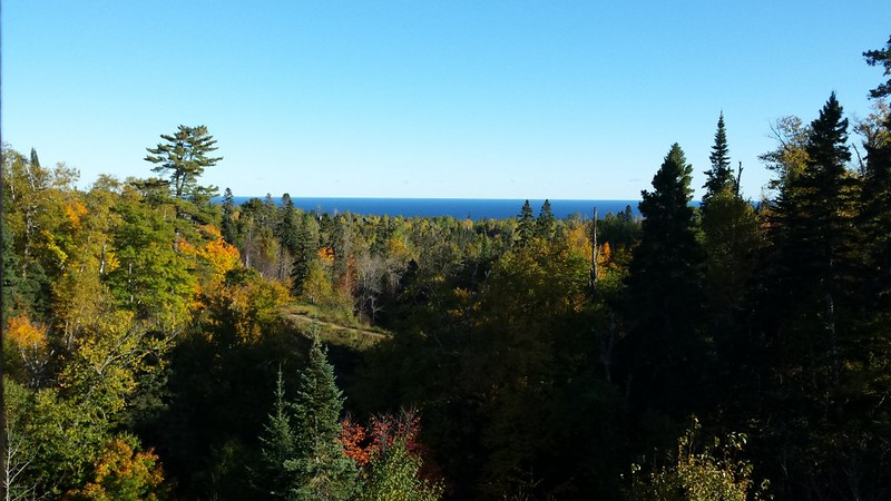 a sliver of the lake in the distance, with lots of pines in the foreground