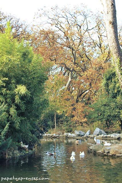 Küçük Çamlıca'da Sonbahar 041