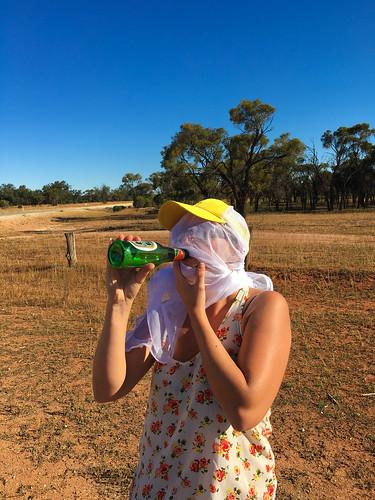 2015-11-14-17-40-02_Outback-0072.jpg