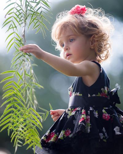 1-a-beleza-da-criao_19322339613_o