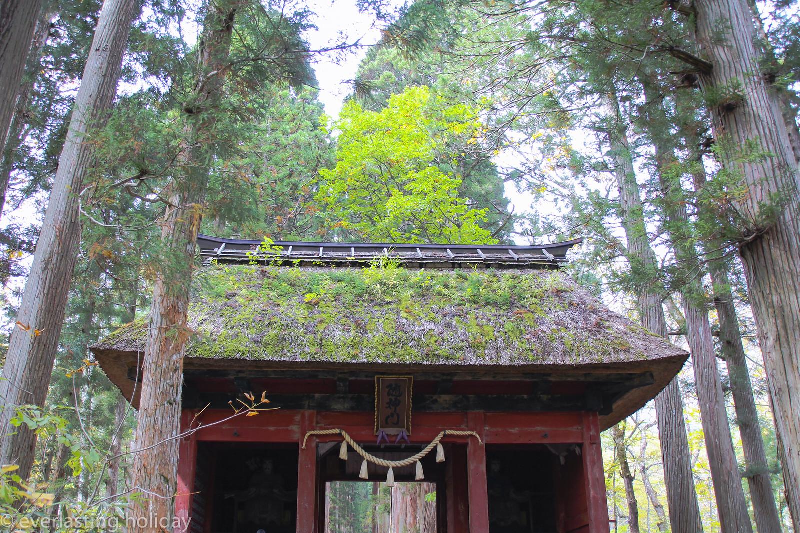 戸隠神社 Togakushi-jinja Shrine-0001