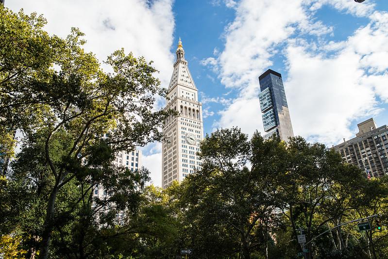 NY Parks