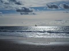 'Twixt sea and sky 2017