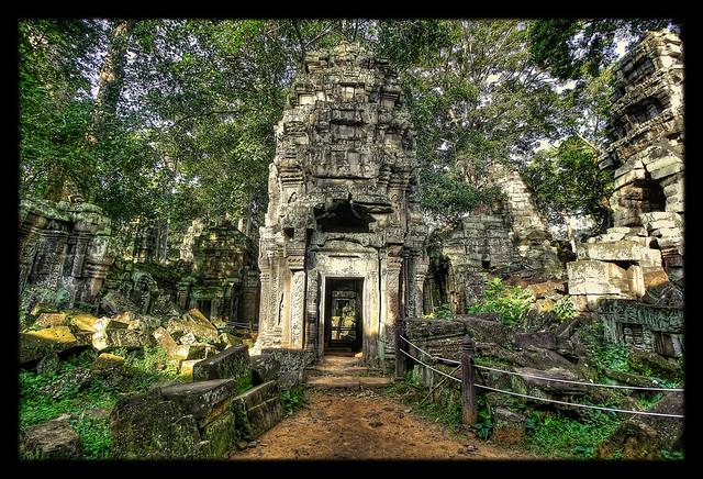 Siem Reap K - Ta Prohm 11
