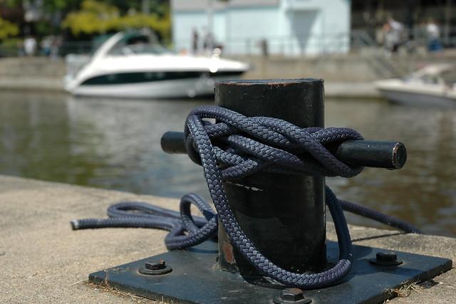 Header of Ties That Bind