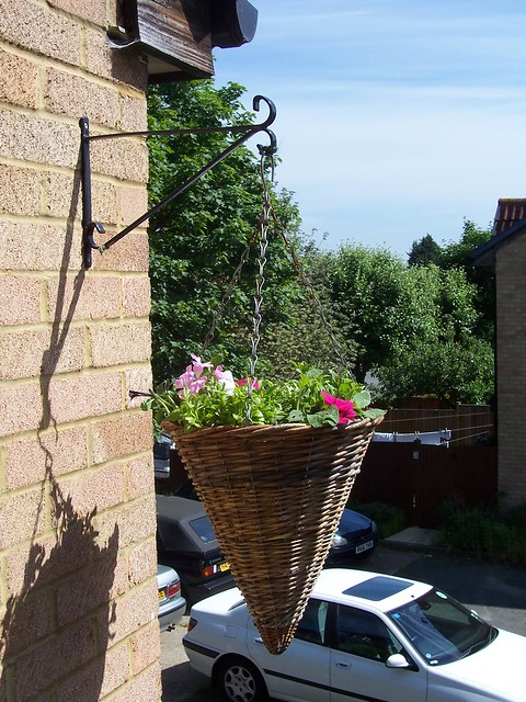 Balcony hanging basket after some debate due to things - Hanging baskets for balcony ...