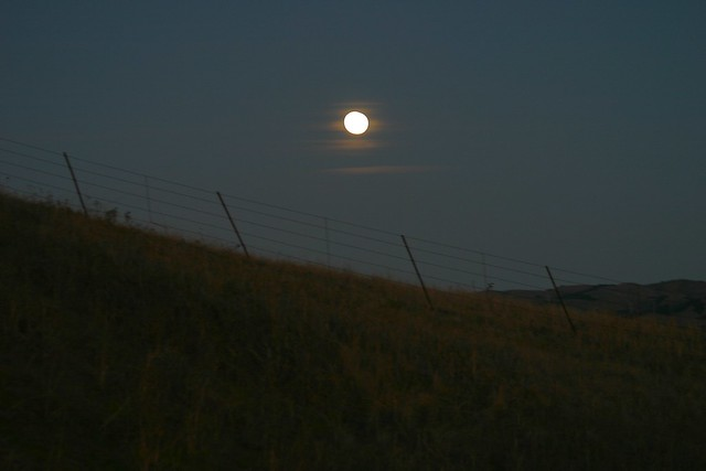 Bad moon rising definition meaning for What does the song moon river mean