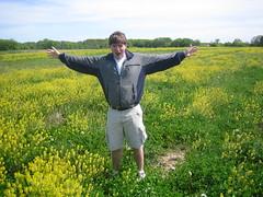 vegetable(0.0), grass(0.0), produce(0.0), rapeseed(0.0), brassica(1.0), canola(1.0), prairie(1.0), agriculture(1.0), farm(1.0), flower(1.0), field(1.0), mustard plant(1.0), crop(1.0), meadow(1.0), rural area(1.0), grassland(1.0),