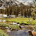 John Muir Wilderness Pack Trip 1972 - 2
