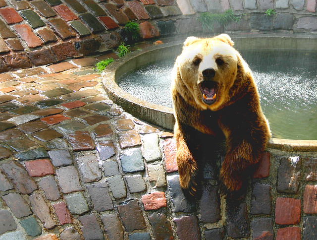 Mundenhof Animal And Nature Adventure Park