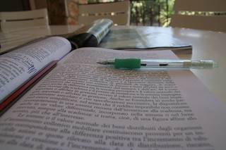 studiare d'estate....