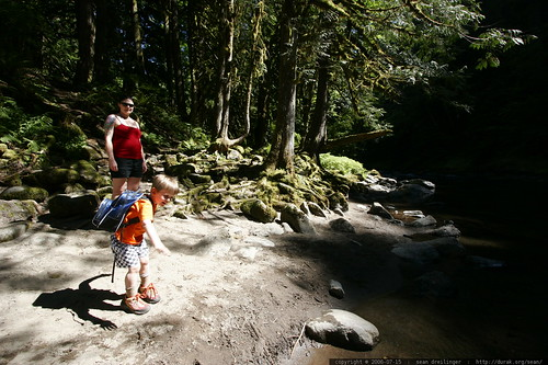 oregon, 2006-07-15, old salmon river trail,… _MG_8532