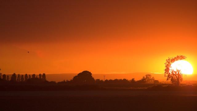 Summer Sunset   Flickr - Photo Sharing!