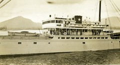 motor ship, vehicle, ship, passenger ship, ocean liner, watercraft, boat, steamboat,