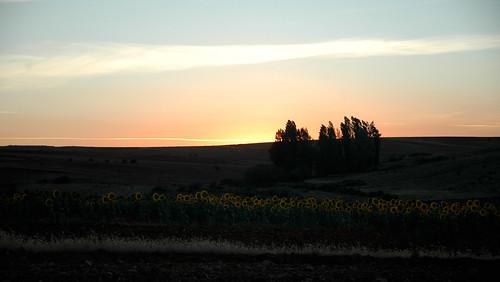 Puesta de sol en Almaraz