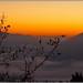 Amanecer con nieblas en el valle by PacoSo