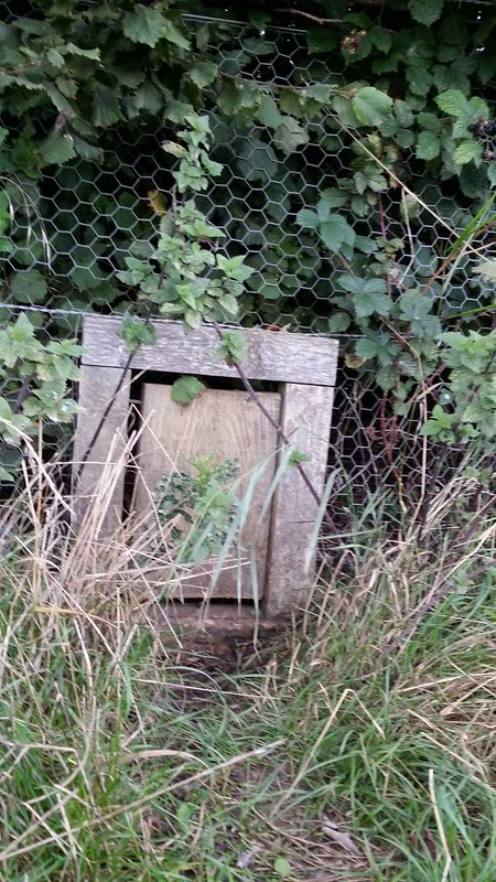 Secret gate #sh
