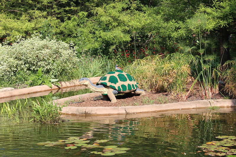 Galapagos Tortoise and Finch: 23,317LEGO bricks and 290 build hours