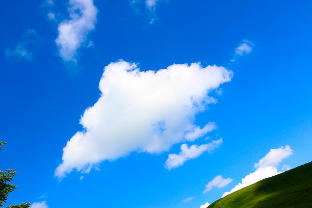 2014-07-26_00734_霧ヶ峰.jpg