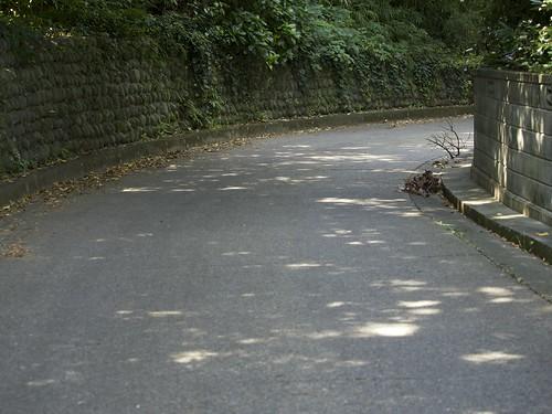石垣のカーブと下り坂
