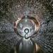 Possums Eel Cave