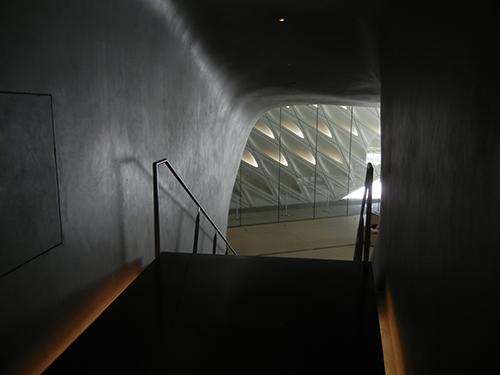 DSCN0451 _ Broad Museum,  LA