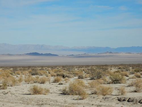 Woestijn onderweg naar Amboy - 1