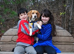 Molly the Beagle and her two biggest fans