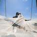 Wedding-0582
