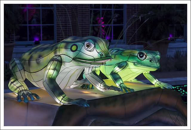 Lantern Festival MoBot 2015-08-28 7